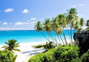Вся карибская недвижимость: обзор  самых надежных инвестплощадок