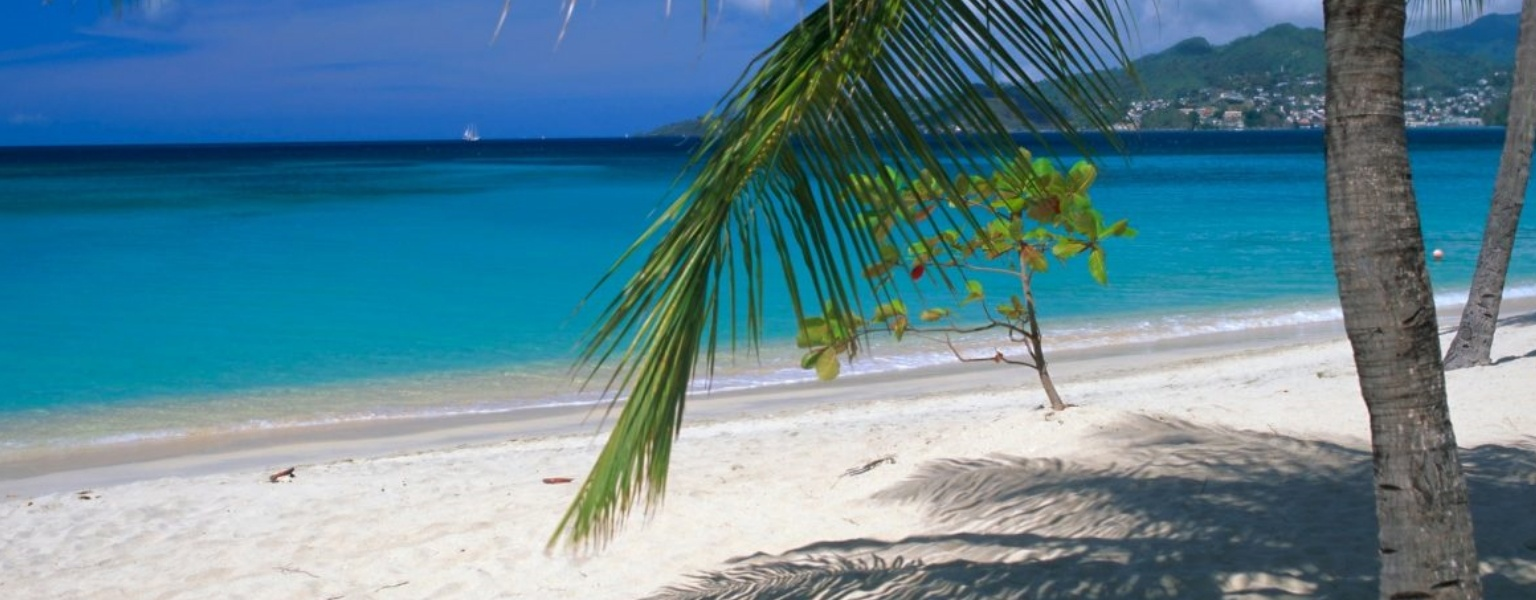 Tax Haven Grenada
