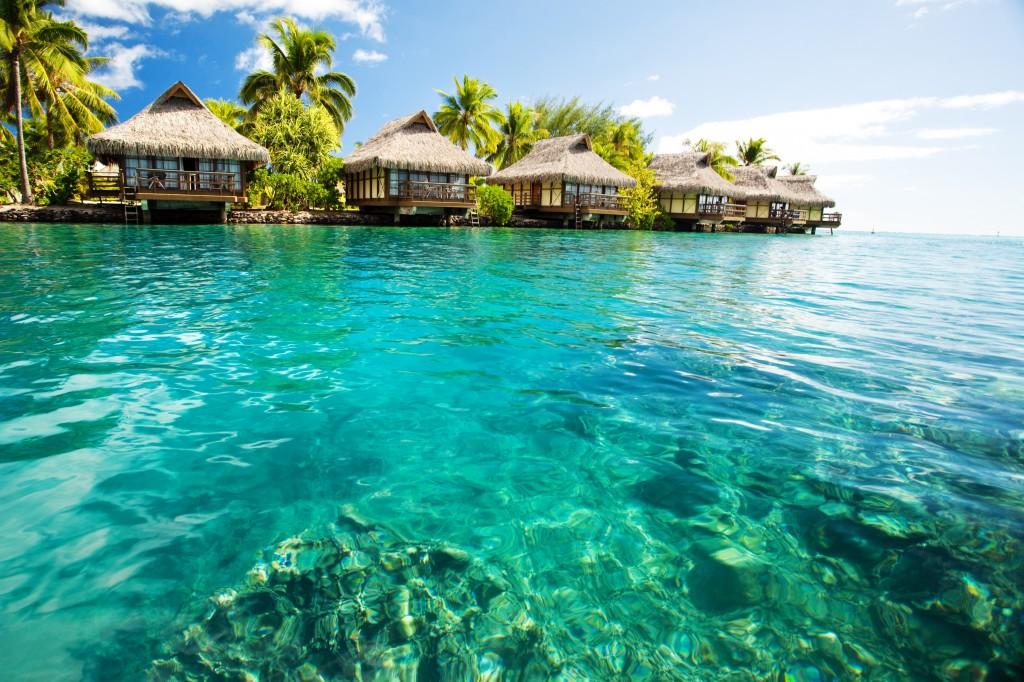 Можно свободно передвигаться по Карибскому бассейну