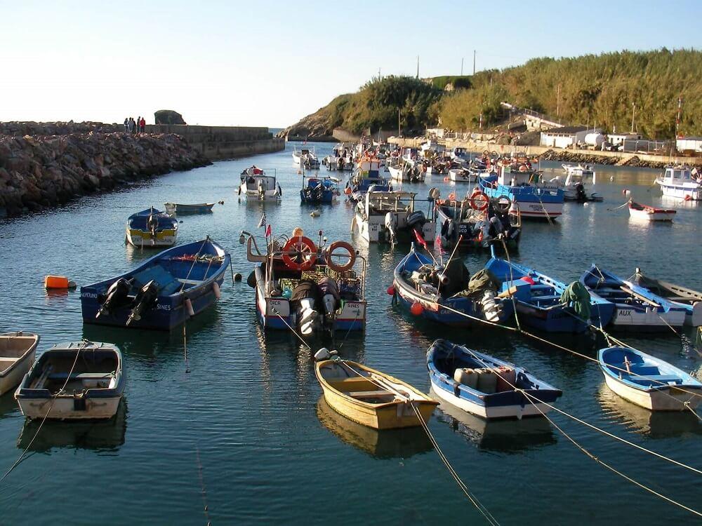 Одна из идей бизнеса в Португалии — рыболовля, местные любят рыбу и морепродукты