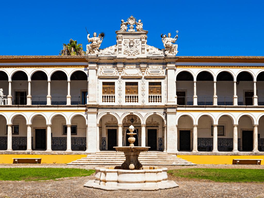 Эвора университет