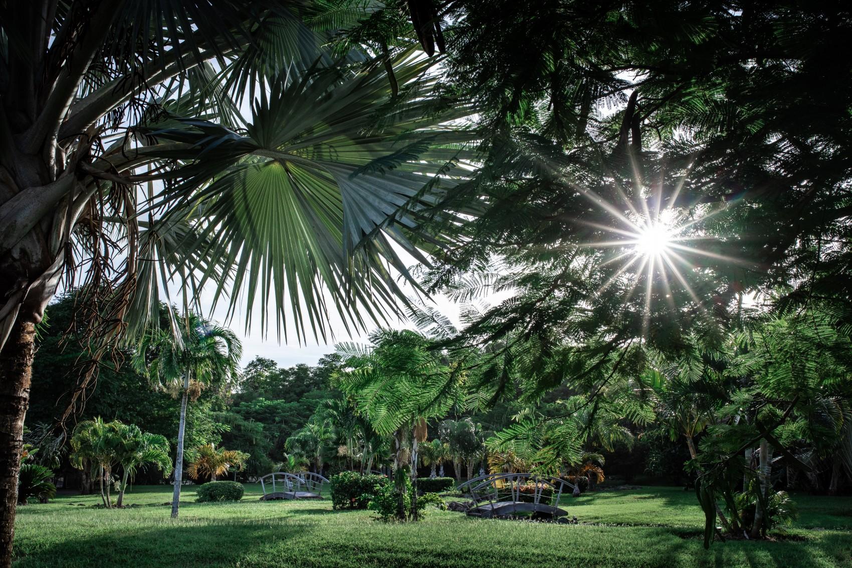 остров каливни - Гренада